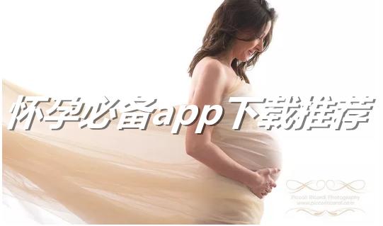 怀孕必备app下载推荐