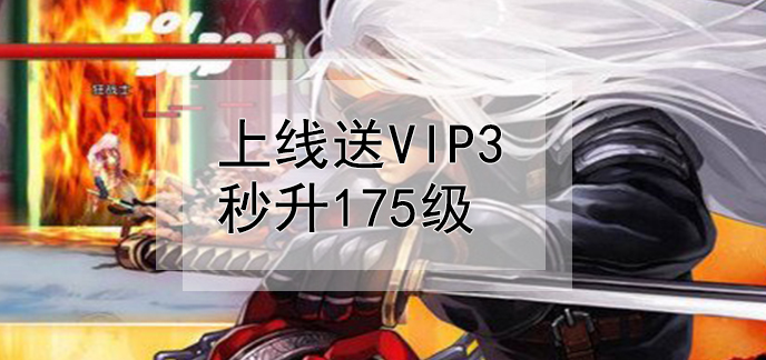 上线送vip3秒升175级