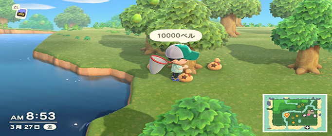 集合啦動物森友會搖錢樹怎么種植