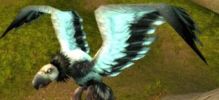 魔兽世界怀旧服食腐鸟在哪-食腐鸟位置坐标